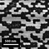 Scanning Electron Microscope (SEM) image of a holographic optical element (HOE) fabricated by CXRO using the CXRO Nanowriter